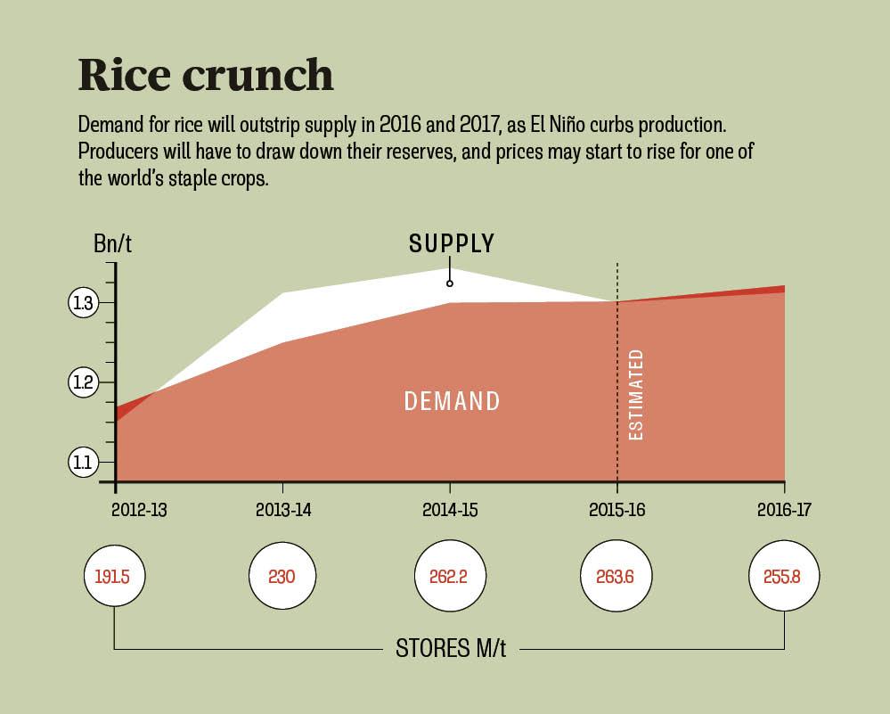 rice crunch