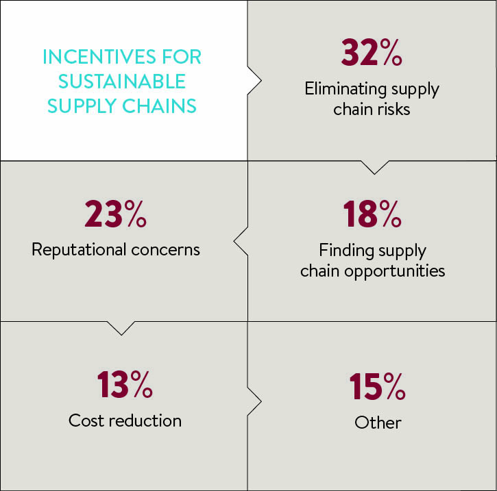 incentives for sustainable change