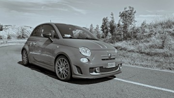 Case Study Fiat