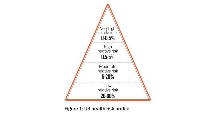 Figure 1: UK health risk profile