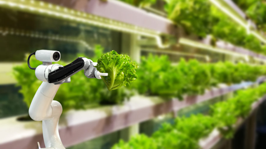 Innovation in agriculture: farming robot