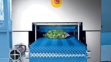 Lamb's lettuce entering machine