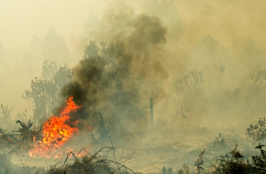 A land fire in Rimbo Panjang village, Kampar, Indonesia