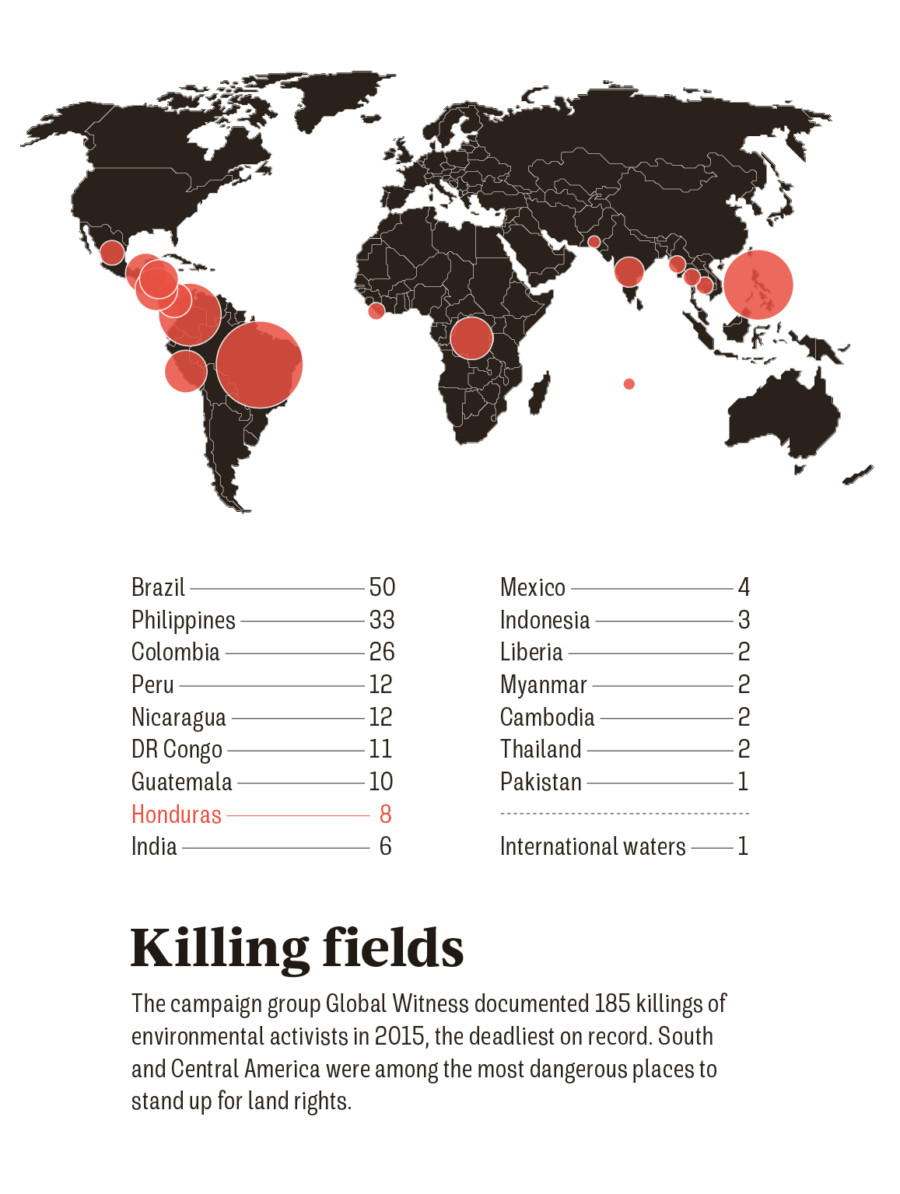 killings of environmental activists 2015