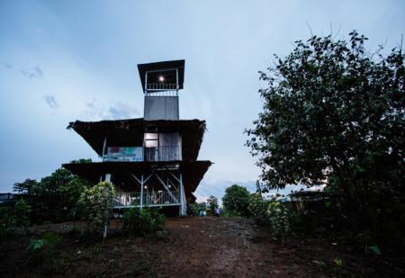 Palm oil plantation lookout