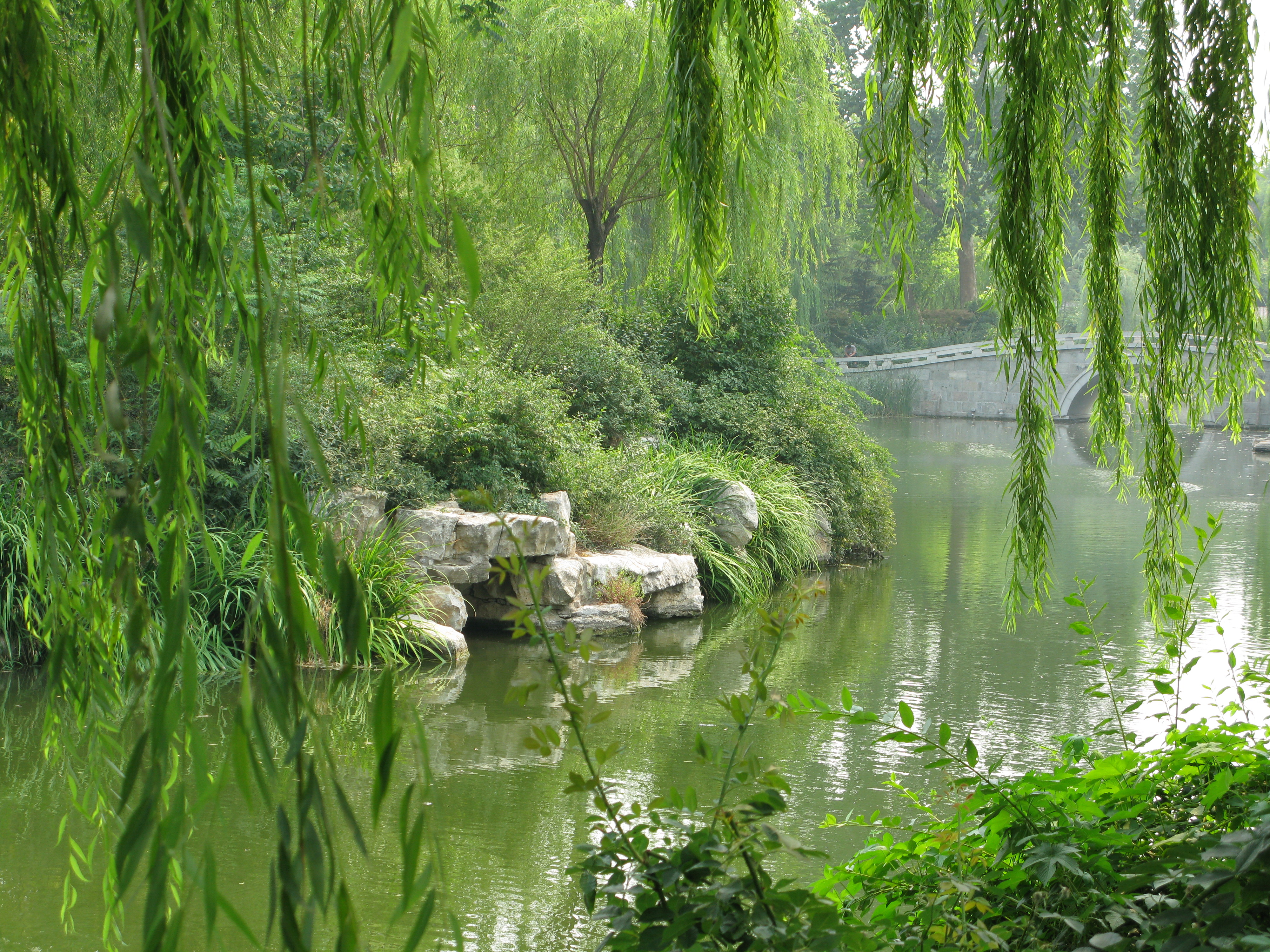"Garden in the ""city of springs"", Jinan"