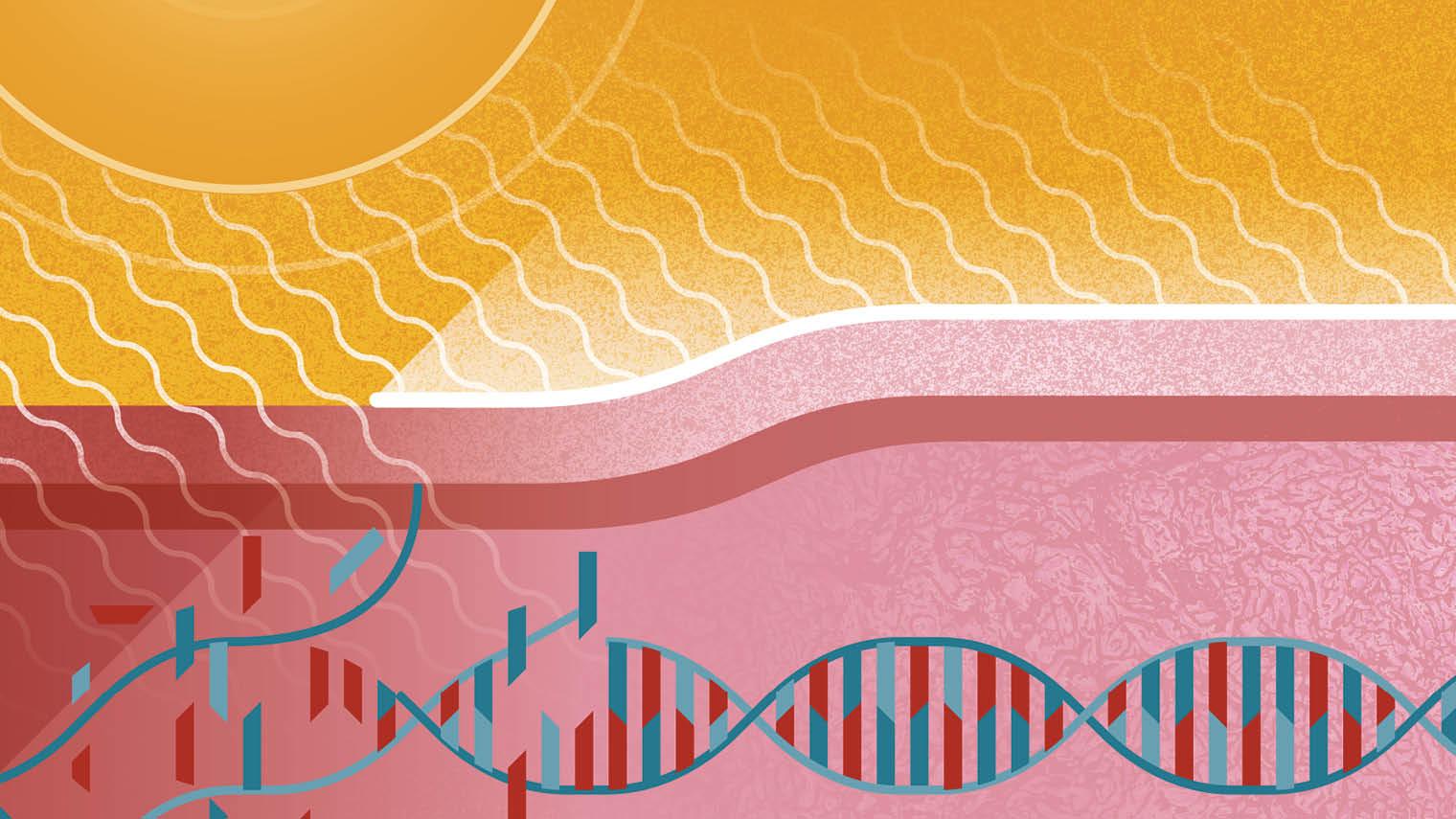 Skincare and dermatology illustration