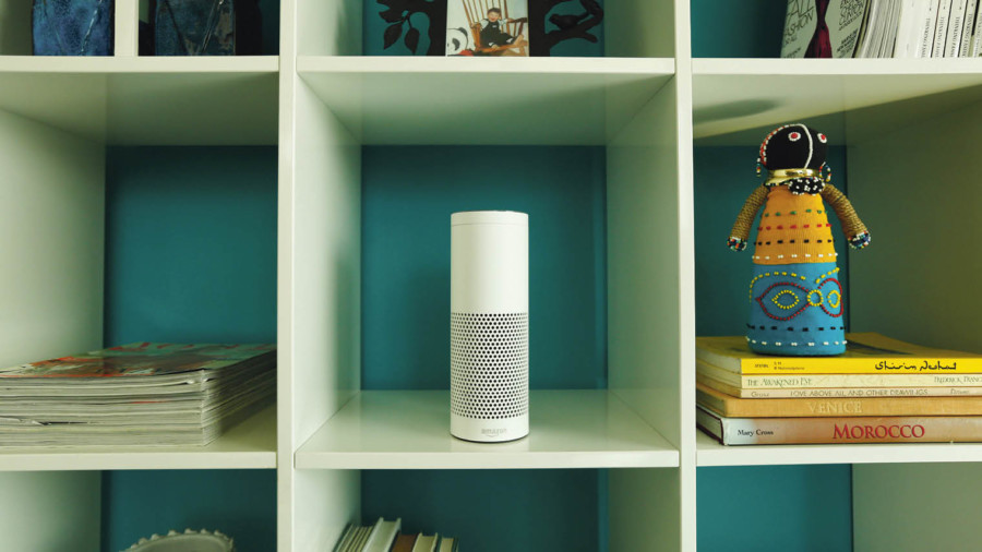Voice-activated assistants such as Amazon's Echo Alexa are collecting valuable data to generate deeper customer insights