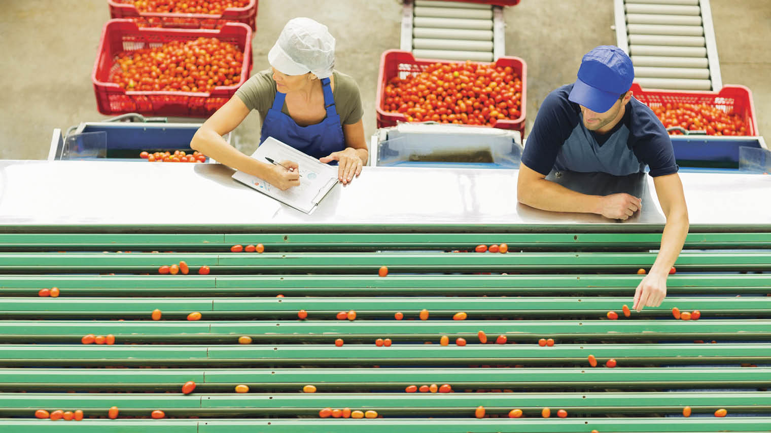 Tech innovation in food industry