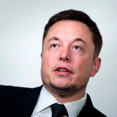 Elon Musk, CEO of Tesla Inc and Space-X