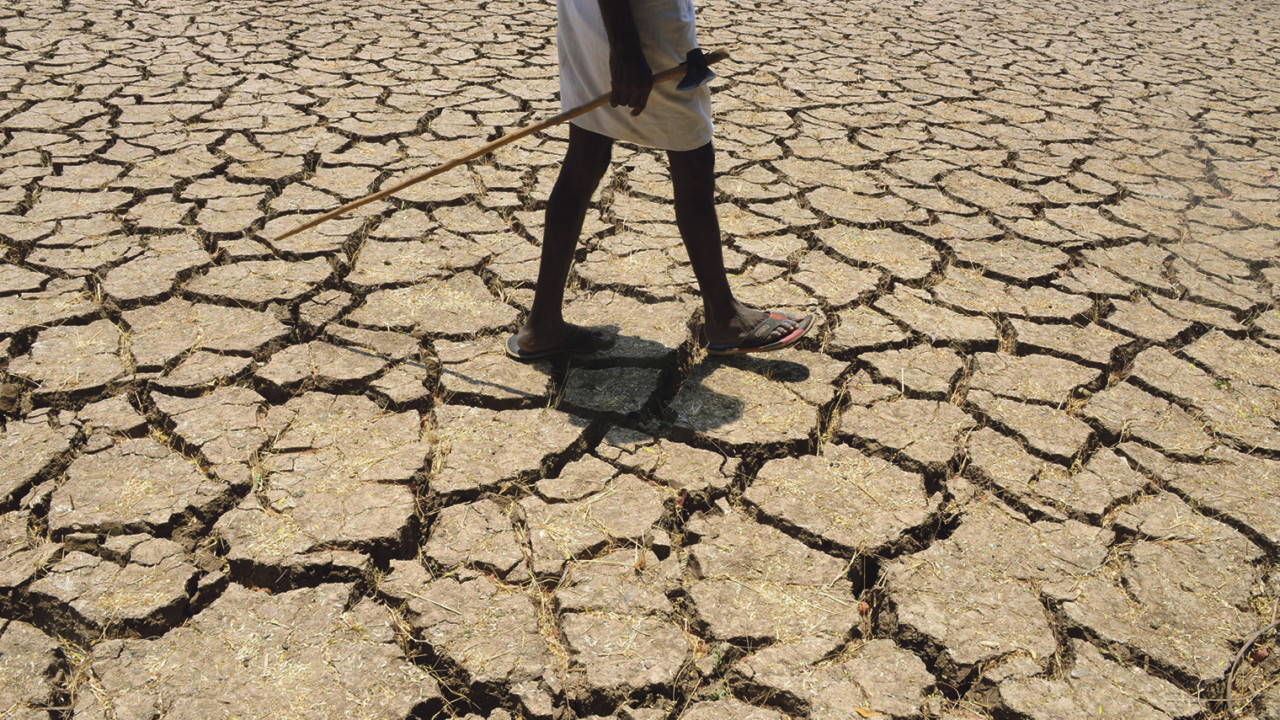 Child walking on cracked land in drought