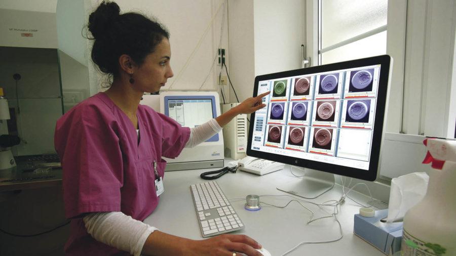 Analysis of embryo development following intracytoplasmic sperm injection at the IVF Centre, University Women's Hospital Bonn, Germany