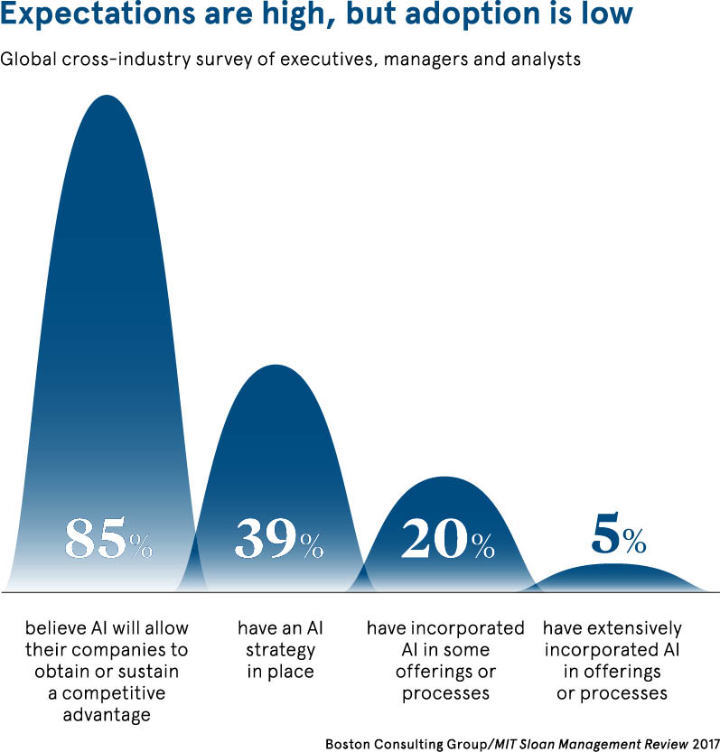 chart about expectations of AI versus adoption