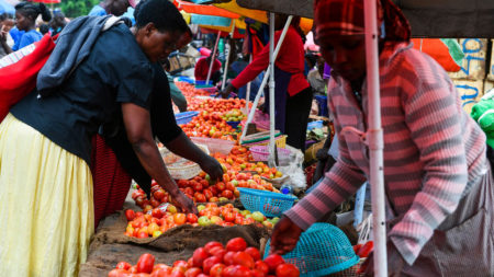 Fruit and vegetable stall at the Kawangware market on the outskirts of Nairobi