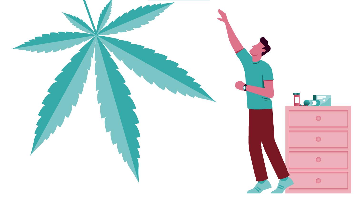 illustration man reaching for cannabis leaf