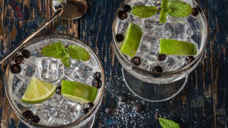 Gin vs Rum