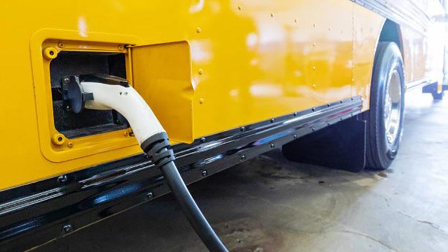 Virginia buses