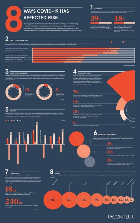 Business risk infographic