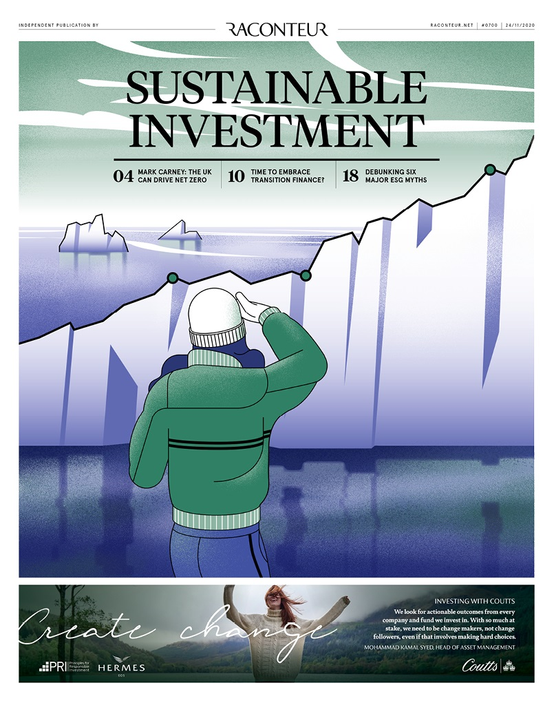 Sustainable investing cover