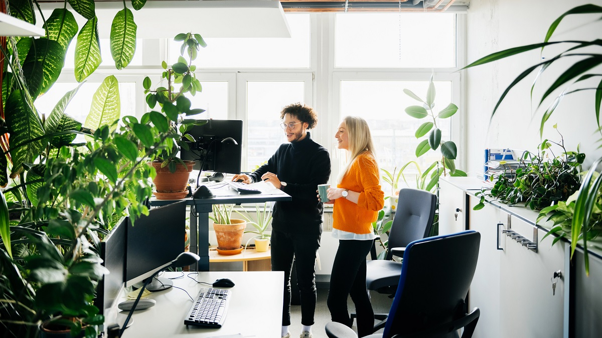 Two Colleagues Looking At Work Using Standing Desk