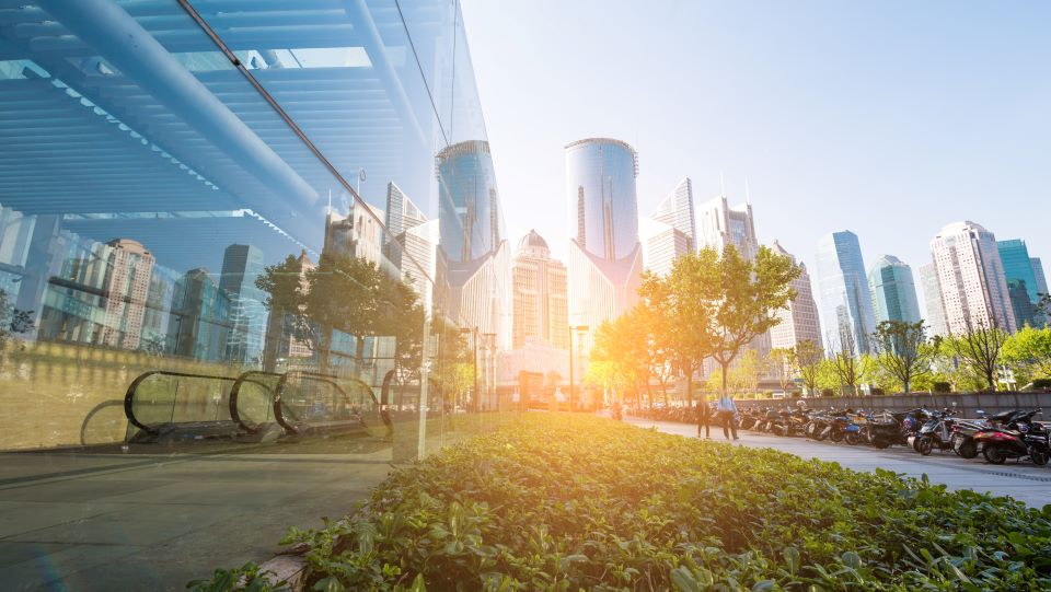 Taking the long view in sustainability leadership